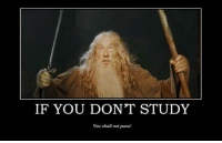 Credit: David Allinson: IF YOU DONT STUDY  You shall not pass! Credit: David Allinson