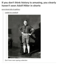 This shits classic 😹: If you don't think history is amusing, you clearly  haven't seen Adolf Hitler in shorts  pure-blood-idjit-of-gallifrey:  castiel-is-a-assbutt  Zis if from mein spring collection This shits classic 😹