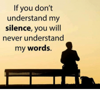Memes, Never, and Silence: If you don't  understand my  silence, you will  never understand  my words.