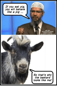 Preacher, Terrorism, and Irl: IF you eat pig,  you will behave  like a pig  Zakir Naik  Self proclaimed preacher  Wanted in relation  with terrorism related activities  So that's why  the bastard  looks like me! me irl