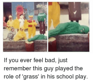 me irl: If you ever feel bad, just  remember this guy played the  role of 'grass' in his school play. me irl