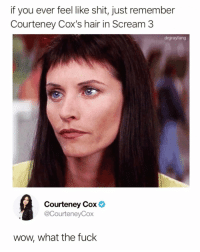 Funny, Scream, and Shit: if you ever feel like shit, just remember  Courteney Cox's hair in Scream 3  drgrayfang  Courteney Cox  @CourteneyCox  wow, what the fuck Now I know why they called it scream @drgrayfang