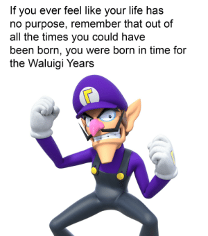i wah ebry tim: If you ever feel like your life has  no purpose, remember that out of  all the times you could have  been born, you were born in time for  the Waluigi Years i wah ebry tim