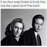 Funny, Pop, and Face Swap: If you face swap Mulder & Scully they  look like a great Synth Pop band Aliens Ate My Buick (@grapejuiceboys)