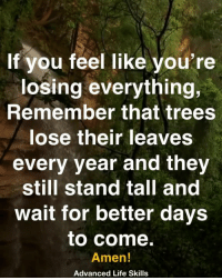 Life, Memes, and Trees: If you feel like you're  losing everything,  Remember that trees  lose their leaves  every year and they  still stand tall and  wait for better days  to come.  Amen!  Advanced Life Skills <3