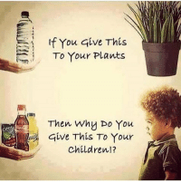 Memes, Skype, and All of The: If You give This  To Your Plants  Then Why Do You  Give This To Your  Children!? Please don't abuse your children, McDonald's is not food... chakabars famfoods Stop feeding your children starch before 3 years old, they don't make the enzyme ptyalin until 3 years, so they can't break down starchy foods. If you want to have a nutritional consultation session on Skype then hit me up, chakabars@spartanfam.com I am trying to get through all of the emails and sessions asap but I will get to you, we will talk, I can help you :) Blessed.