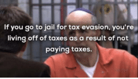 Jail, Memes, and Taxes: If you go to jail for tax evasion, you're  living off of taxes as a result of not  paying taxes. *theft