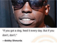 """me🐕irl: """"If you got a dog, feed it every day. But if you  don't, don't.""""  -Bobby Shmurda me🐕irl"""