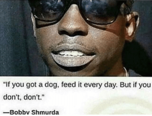 """Words of Wisdom: """"If you got a dog, feed it every day. But if you  don't, don't.""""  -Bobbv Shmurda Words of Wisdom"""