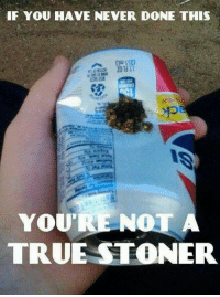 Memes, True, and Never: IF YOU HAVE NEVER DONE THIS  SSE)  TRUE STONER