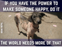 Streets, Happy, and Help: IF YOU HAVE THE POWER TO  MAKE SOMEONE HAPPY DO IT  THE WORLD NEEDS MORE OF THAT #Help Street Dogs #Feed them at least if it's on ur way  #कुकुर_तिहार