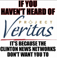 Memes, News, and Videos: IF YOU  HAVENT HEARDOF  Veritas.  IT'S BECAUSE THE  CLINTON NEWS NETWORKS  DON'T WANT YOU TO So far Sean Hannity is the only one who's covered it that I know of, but everyone needs to see the video (posted in the comments). ESPECIALLY DEMOCRATS AND NEVER TRUMPERS. You are being manipulated. WikiLeaks only scratches the surface.  Be An Informed Voter.