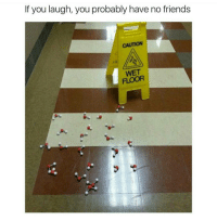 laughing: If you laugh, you probably have no friends  CAUTION  FLOOR