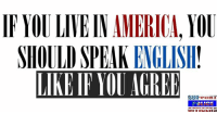 Memes, 🤖, and Speak: IF YOU LIVEINAMERICA, YOU  SHOULD SPEAK  ENGLISH  LIKE IF AGREE  SEAR