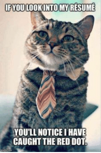 Memes, Resume, and 🤖: IF YOU LOOKINTOMY RESUME  YOU'LL NOTICE IHAVE  CAUGHT THE RED DOT No big deal...