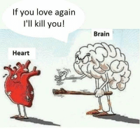 Love, Memes, and Brain: If you love again  I'll kill you!  Brain  Heart  2 Follow our new page - @sadcasm.co