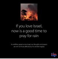 tragedy: If you love Israel  now is a good time to  pray for rain  As wildfires spread across Israel, our thoughts and prayers  are with all those affected by this terrible tragedy  tip