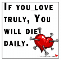 If you love truly, You will die daily.: IF You LOVE  PRAKHAR TRULY, You  WILL DIE  DAILY.  PRAKHAR SAHAY  Like Love Quotes. com If you love truly, You will die daily.