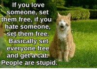 Love, Memes, and Free: If you love  someone, set  them free, if you  hate someone,  set them free  Basically set  everyone free  and get a cat.  People are stupid.