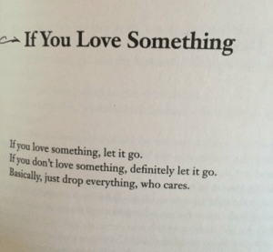epicjohndoe:  If You Love Something, Here's Some Advice: If You Love Something  If you love something, let it go.  If you don't love something, definitely let it go.  Basically, just drop everything, who cares. epicjohndoe:  If You Love Something, Here's Some Advice