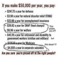 ~ By Ded Silence: If you make $50,000 per year you paya  $247.75 a year for defense  $3.98 a year for natural disaster relief (FEMA)  S22.88 a year for unemployment insurance  $36.82 a year for SNAP (food stamps)  This  pisses  $6.96 a year for welfare  you off  $43.78 a year for retirement and disability to  government workers (civilian and military) but  Medicare  this doesn't?  $4,000 a year in corporate subsidies  Are you sure you're pissed off at the right people? ~ By Ded Silence