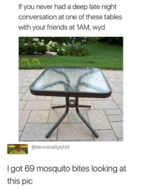 Friends, Meme, and Wyd: If you never had a deep late night  conversation at one of these tables  with your friends at 1AM, wyd  @terminallychill  I got 69 mosquito bites looking at  this pic Like My Page Meme Mang For More