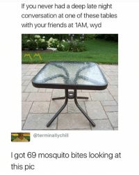 Friends, Wyd, and Dank Memes: If you never had a deep late night  conversation at one of these tables  with your friends at 1AM, wyd  @terminallychill  I got 69 mosquito bites looking at  this pic Follow me (@thebraintickle) for more