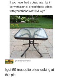 Friends, Memes, and Wyd: If you never had a deep late night  conversation at one of these tables  with your friends at 1AM, wyd  @terminallychill  I got 69 mosquito bites looking at  this pic @mememang always posts 🔥🔥🔥
