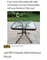 Friends, Wyd, and Dank Memes: If you never had a deep late night  conversation at one of these tables  with your friends at 1AM, wyd  @terminallychill  I got 69 mosquito bites looking at  this pic Honestly