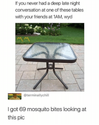 Friends, Love, and Wyd: If you never had a deep late night  conversation at one of these tables  with your friends at 1AM, wyd  @terminallychill  I got 69 mosquito bites looking at  this pic i love myself