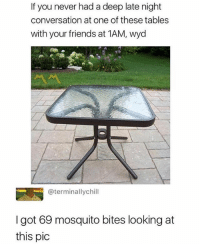 Friends, Wyd, and Never: If you never had a deep late night  conversation at one of these tables  with your friends at 1AM, wyd  @terminallychill  I got 69 mosquito bites looking at  this pic Follow @sigh