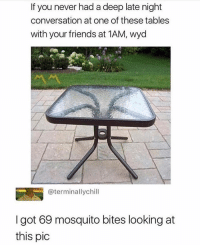Friends, Wyd, and Girl Memes: If you never had a deep late night  conversation at one of these tables  with your friends at 1AM, wyd  @terminallychill  I got 69 mosquito bites looking at  this pic Was worth it
