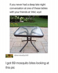 Dank, Friends, and Wyd: If you never had a deep late night  conversation at one of these tables  with your friends at 1AM, wyd  @terminallychill  I got 69 mosquito bites looking at  this pic