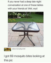 Friends, Memes, and Wyd: If you never had a deep late night  conversation at one of these tables  with your friends at 1AM, wyd  @terminallychill  I got 69 mosquito bites looking at  this pic I can hear their biting sounds. via /r/memes https://ift.tt/2IkC0Uf