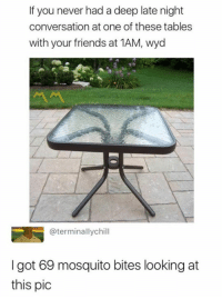 Friends, Memes, and Wyd: If you never had a deep late night  conversation at one of these tables  with your friends at 1AM, wyd  @terminallychill  I got 69 mosquito bites looking at  this pic