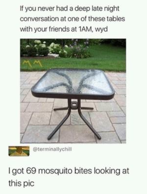 Dank, Friends, and Memes: If you never had a deep late night  conversation at one of these tables  with your friends at 1AM, wyd  @terminallychill  Igot 69 mosquito bites looking at  this pic Meirl by radowanhabib MORE MEMES