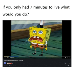Good usage of your last seconds: If you only had 7 minutes to live what  would you do?  0:34/6:48  Spongebob hyperventilating for 7 minutes  bob shacklefurd  D Abonnieren 22  8.639 Aufrufe  Teilen Mehr  43 Good usage of your last seconds