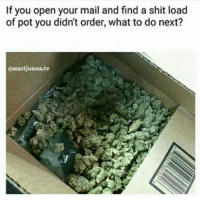 What would you do? 🤔🤔 ( @cannasocietys420 ): If you open your mail and find a shit load  of pot you didn't order, what to do next?  @marijuana.tv What would you do? 🤔🤔 ( @cannasocietys420 )