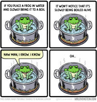 Mr. Lovenstein: IF YOU PLACE A FROG IN WATER  AND SLOWLY BRING IT TO A BOIL  IT WON'T NOTICE THAT IT'S  SLOWLY BEING BOILED ALIVE  NAW MAN, I KNOW. I KNOW  o-  8  THIS COMIC MADE POSSIBLE THANKS TO DUNCAN LATHLIN @MrLovenstein MRLOVENSTEIN.COM Mr. Lovenstein