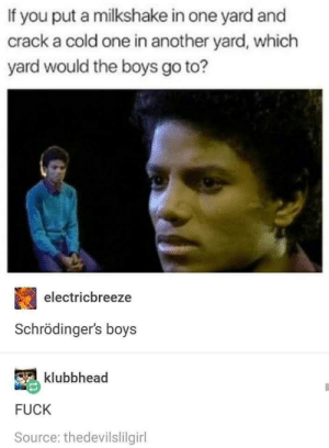The boys exist in both yards simultaneously: If you put a milkshake in one yard and  crack a cold one in another yard, which  yard would the boys go to?  electricbreeze  Schrödinger's boys  klubbhead  FUCK  Source: thedevilslilgirl The boys exist in both yards simultaneously