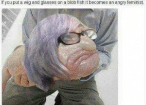 Memes, Fish, and Glasses: If you put a wig and glasses on a blob fish it becomes an angry teminist It really does via /r/memes https://ift.tt/2F0Lohv