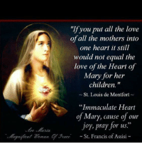 """Children, Love, and Memes: """"If you put all the love  of all the mothers into  one heart it still  would not equal the  love of the Heart of  Mary for her  children.  St. Louis de Montfort  """"Immaculate Heart  of Mary, cause of our  joy, pray for us.  ognjicat Zoman qurace St. Francis of Assisi Truly one of Christ's greatest gifts to us is His Mother (John 19:26-27)."""