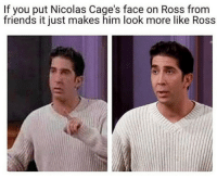 Friends, Ross, and Him: If you put Nicolas Cage's face on Ross from  friends it just makes him look more like Ross hmmm.
