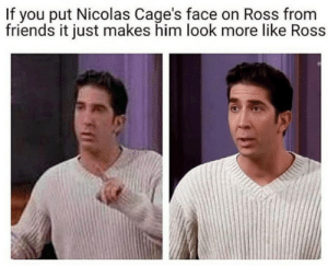 Dank, Friends, and Memes: If you put Nicolas Cage's face on Ross from  friends it just makes him look more like Ross hmmm. by Behemoth_Nemoth MORE MEMES
