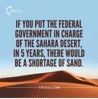 Memes, Government, and 🤖: IF YOU PUT THE FEDERAL  GOVERNMENT IN CHARGE  THE SAHARA DESERT,  IN 5 YEARS, THERE WOULD  BE A SHORTAGE OF SAND  TPUSA COM #BigGovSucks