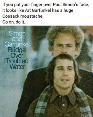 Water, Art, and Art Garfunkel: If you put your finger over Paul Simon's face,  it looks like Art Garfunkel has a huge  Cossack moustache.  Go on, do it...  Simon  and  Garfunkel  Bridge  Over  Troubled  Water