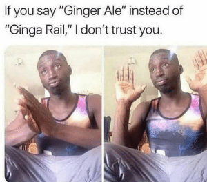 "Can't trust you..😂💯: If you say ""Ginger Ale"" instead of  ""Ginga Rail,"" I don't trust you. Can't trust you..😂💯"