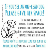 Dogs, Memes, and Run: IF YOU SEE AN ON-LEAD DOG  PLEASE GIVE HER SPACE!  THE ON LEAD DOG MIGHT BE.  く.Ⅳ  バ,  NERVOUS-ELDERLY-IN TRAINING  RECOVERING FROM INJURY OR SURGERY  NEWLY ADOPTED OR JUST NOT INTERESTED  IN INTERACTING WITH OTHER DOGS!  PLEASE DON'T LET YOUR OFF LEAD DOG RUN UP TO  AN ONLEAD DOG SOME DOGS NEED SPACE. THANK YOU