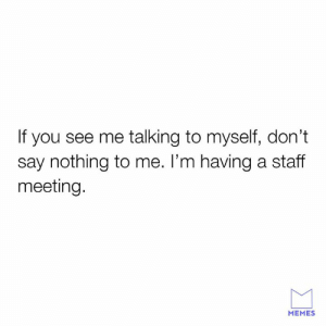 Gotta ask the experts.: If you see me talking to myself, don't  say nothing to me. l'm having a staff  meeting.  MEMES Gotta ask the experts.