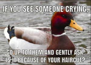 """Old school memes: IF YOU SEE SOMEONE CRYING  GO UP TO THEM AND GENTLY ASIS  (ISIT-BECAUSE OF YOUR HAIRCUT?""""  mematic.net Old school memes"""